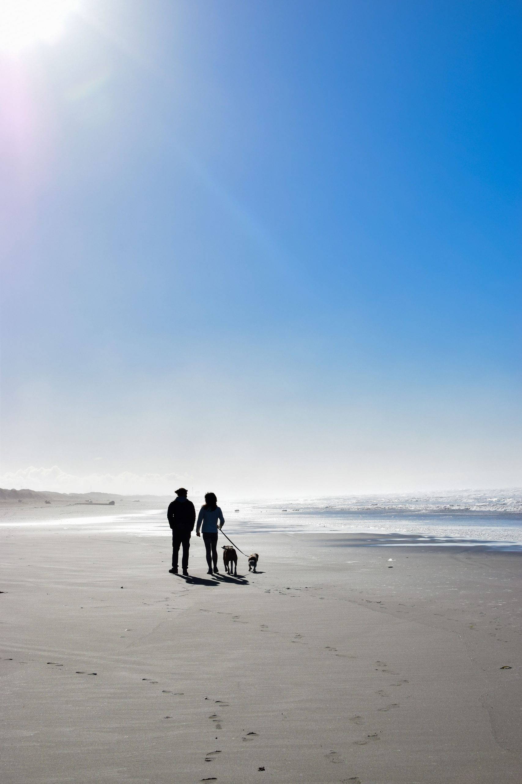 12 Wonderful Local Walks During This Time of Social Distancing